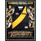 Richmond Tigers Signed 2014 jersey framed