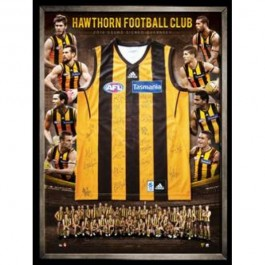 Hawthorn Hawks 2013 signed jersey squad image full view