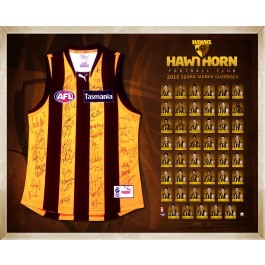 Hawthorn Hawks 2012 signed jersey squad image full view