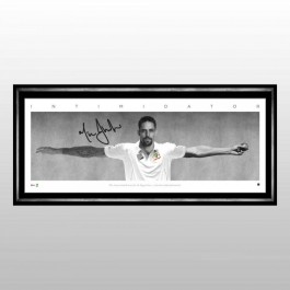 Mitchell Johnson Signed wings image