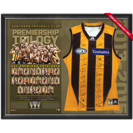 Hawthorn Hawks 2015 Signed Jersey Guernsey image