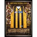 Hawthorn Hawks 2013 signed jersey squad