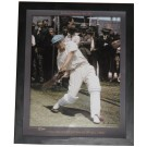 Donald Bradman signed photo Framed Memorabilia image full view